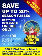 Save Santa's Enchanted Forest