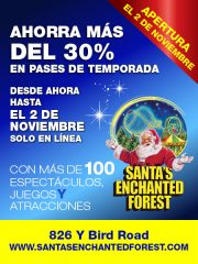 Santa's Enchanted Forest 30% OFF