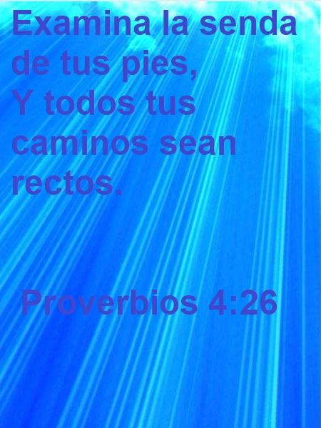 Proverbios-4-26-Web
