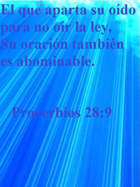 Proverbio-28-9-Web