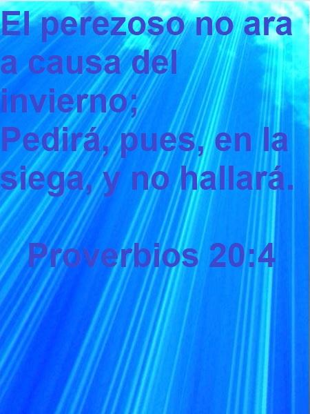 Proverbios-20-4-Web-1