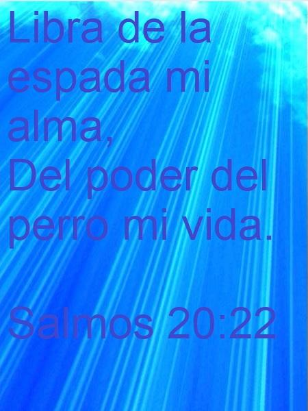Salmos-20-22-Web